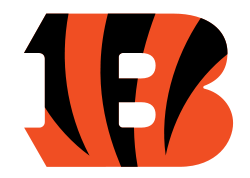 Cincinnati Bengals Team Season Stats by Week
